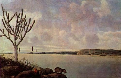 Rio São Francisco, pintura de Frans Post.
