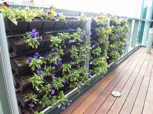 Take Your Spring Planting Vertical for Dramatic Effect