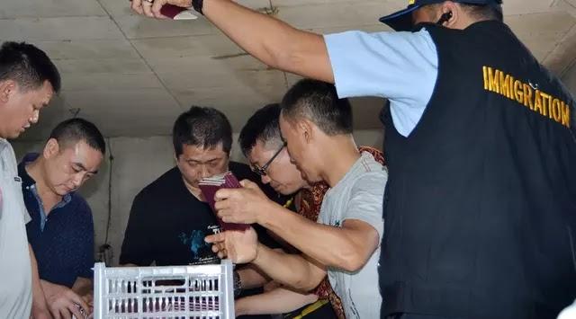 Nah Rasain Loh Dasar Pendatang Haram, Diinspeksi, Ratusan Pekerja Asal Tiongkok Terbirit-birit ke Hutan