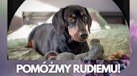 Pomóżmy Rudiemu