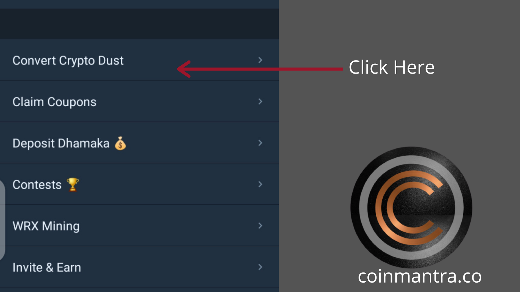Now Convert Your Dust Into WRX (WazirX Native Token )