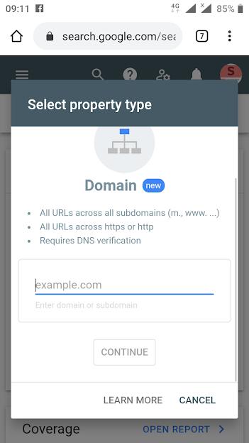 Add domain to Google
