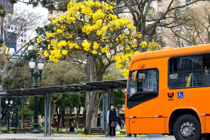 Covid-19: Curitiba continua na bandeira laranja, mas amplia horário do comércio e feiras livres