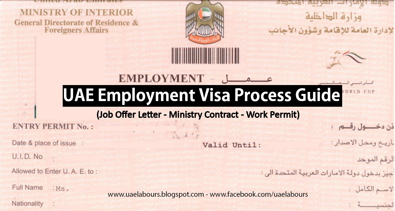uae employment visa process  step by step guide