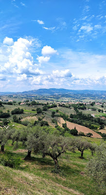 montefalco areale vitivinicolo