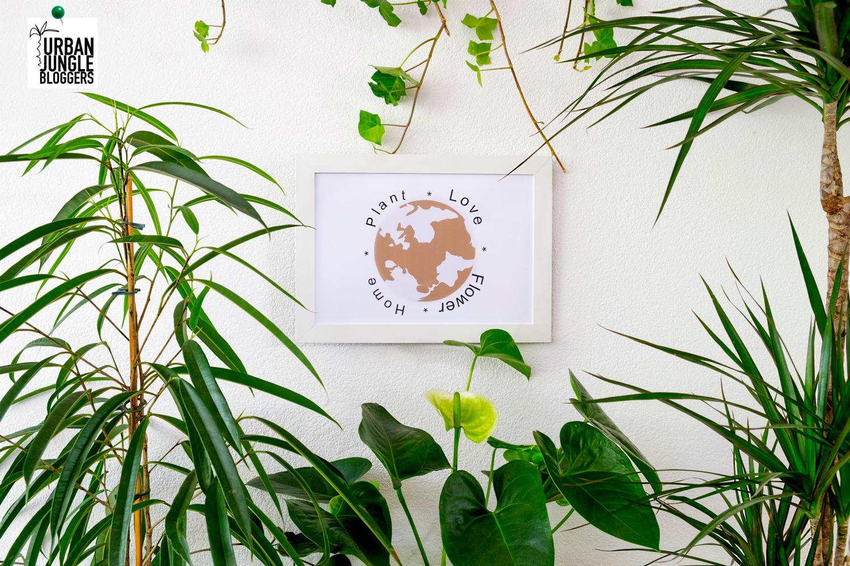 Plants & Words: inspiratie voor je huis - Urban jungle bloggers