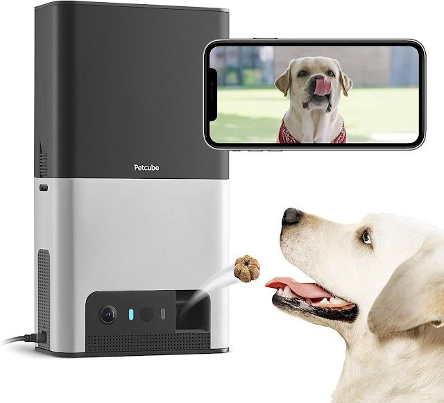Petcube Bites 2 Cámara Wi-Fi para mascotas