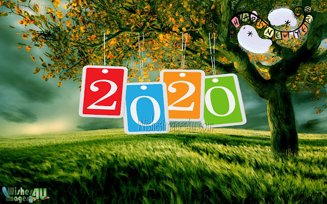 Happy New year 2020 Nature Photos In HD Download Free