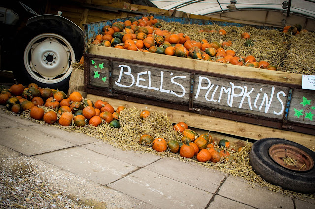 Bell's Pumpkin Patch