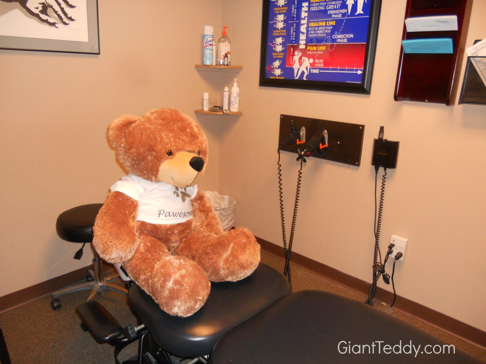 patient was a Giant Teddy bear