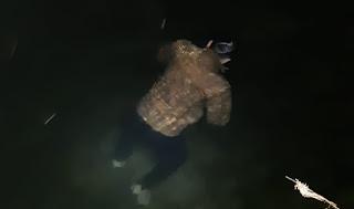 Identitas Jasad yang Tewas Mengambang di Danau Singkarak Akhirnya Diketahui