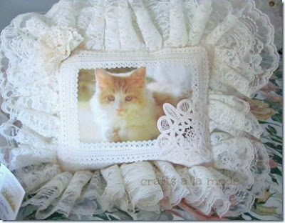 Printed cat on front of lace pillow