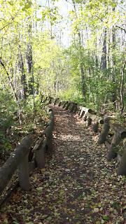 Sentier Parc de Bois-de-Liesse, automne, feuilles mortes, passerelles