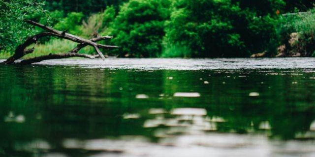 Río Rahue, contaminación