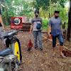 Team Gabungan Resmob Dan Personil Polsek Marbo, Berhasil Gagalkan Judi Sabung Ayam Di Desa Banggae
