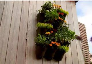 Katie Rushworth planter