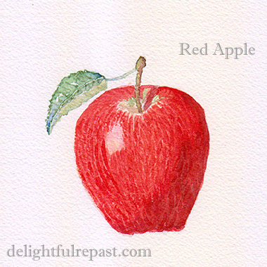 Rustic Apple Tart (easier than pie!) with Sour Cream Pastry (this photo, my watercolor painting of a red apple) / www.delightfulrepast.com