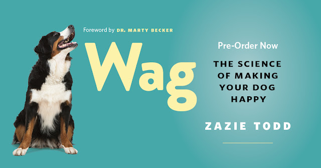 How to pre-order Wag: The Science of Making Your Dog Happy