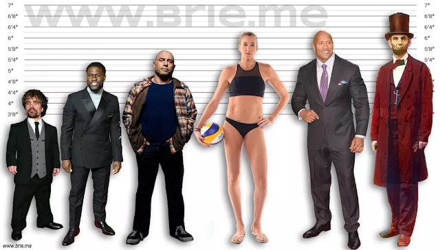Peter Dinklage, Kevin Hart, Joe Rogan, Kerri Walsh Jennings, The Rock, and Abraham Lincoln height comparison