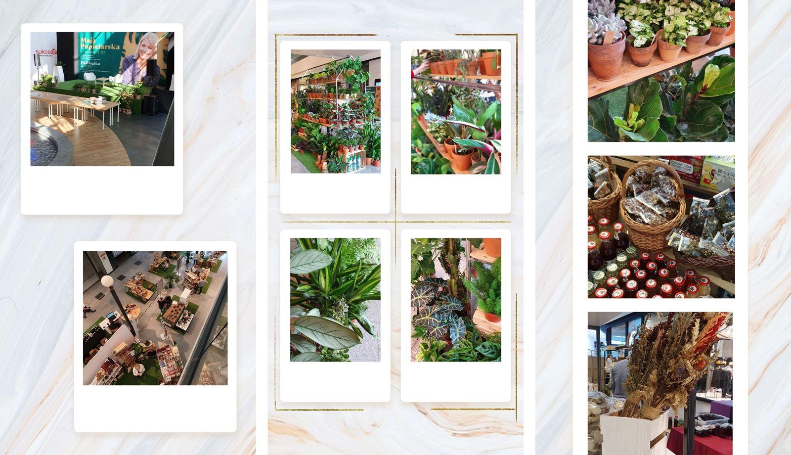 EKOlogika - ekologiczna inicjatywa w łodzi, eko vintage shop - relacja z wydarzenia, blogerka łódzka lifestyle, fashion, beauty. Melodylaniella - łódź