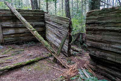 Inside the Miner's Cabin Ruin,  The John Tursi Trail