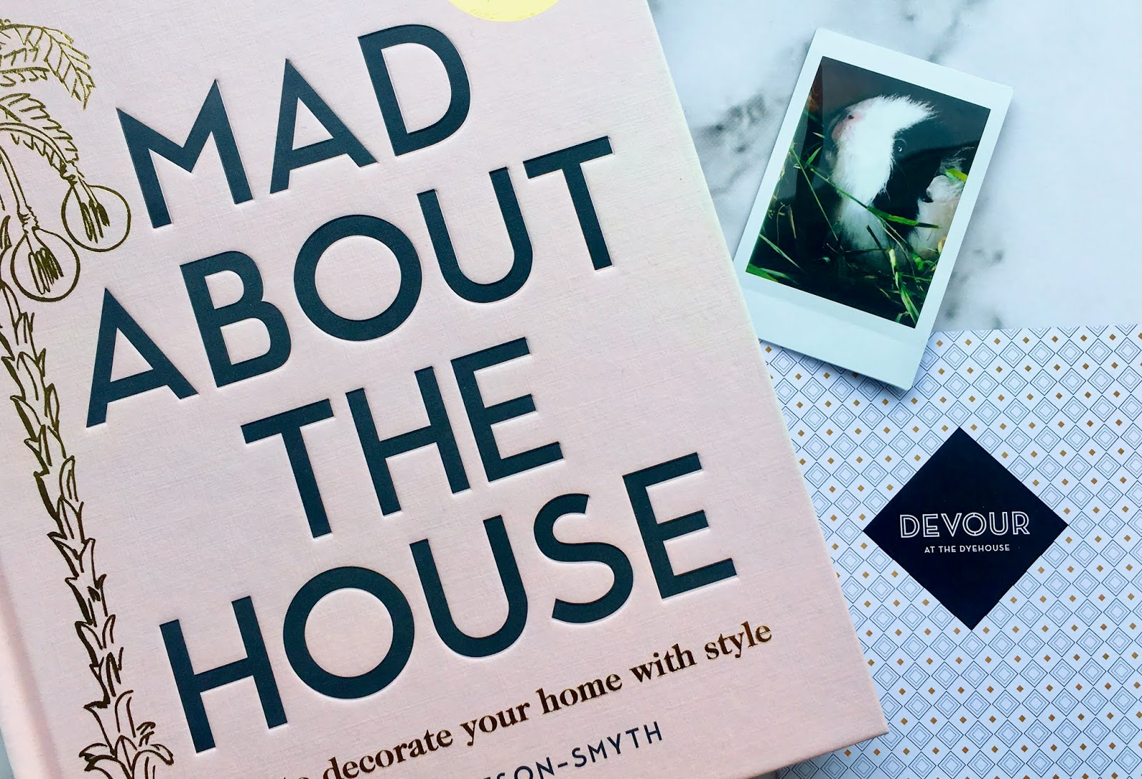 Mad About The House book, Cookie the Guinea Pig, and Devour restaurant