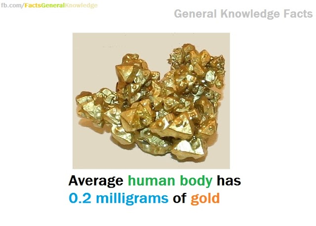 Human body has 0.2 milligrams of gold