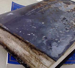 Quitar moho de los libros rincon del bibliotecario - Como quitar humedad de la pared ...