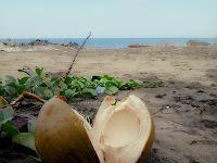 Pantai Poto Batu 9
