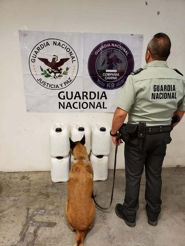 IMPIDEN GUARDIAS NACIONALES LA COMERCIALIZACIÓN DE ALREDEDOR DE 166 KILOS DE APARENTE METANFETAMINA LÍQUIDA Y GRANULADA