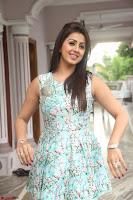 Nikki Galrani at Prema leela pelli gola trailer Launch ~  Exclusive 055.JPG