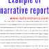 Example of narrative reports