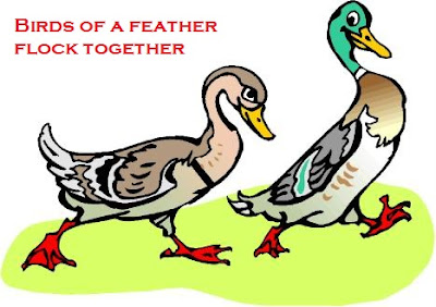 Meaning and sentence of the idiom 'Birds of a feather flock together'