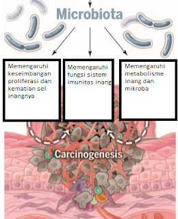 mikroba menginduksi karsinogenesis