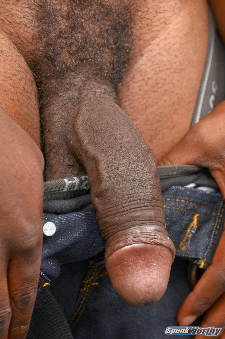 Big Black Hairy Cock