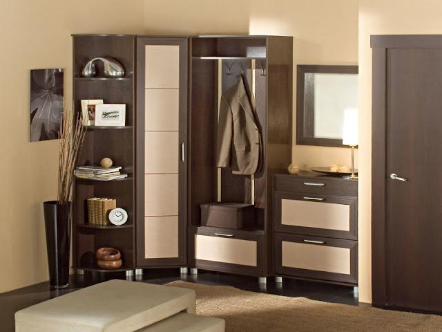 Beautiful Dark bedroom wardrobe interior