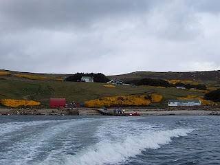 De viajeros por las Islas Malvinas o Falkland Islands 4