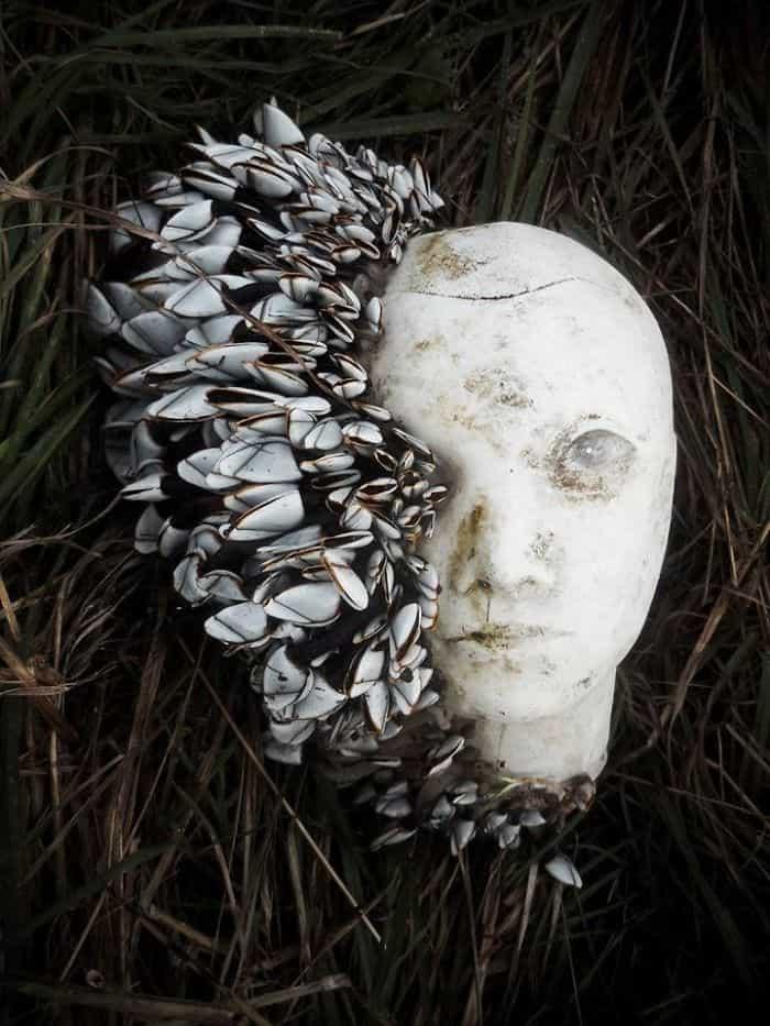 رأس دمية,أغرب أشياء وجدت على الشواطئ,أغرب الاشياء