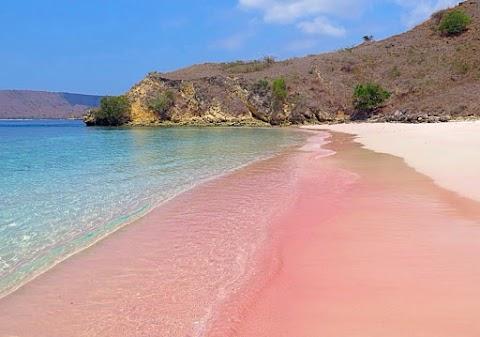 5 Laut Terindah yang ada di Indonesia