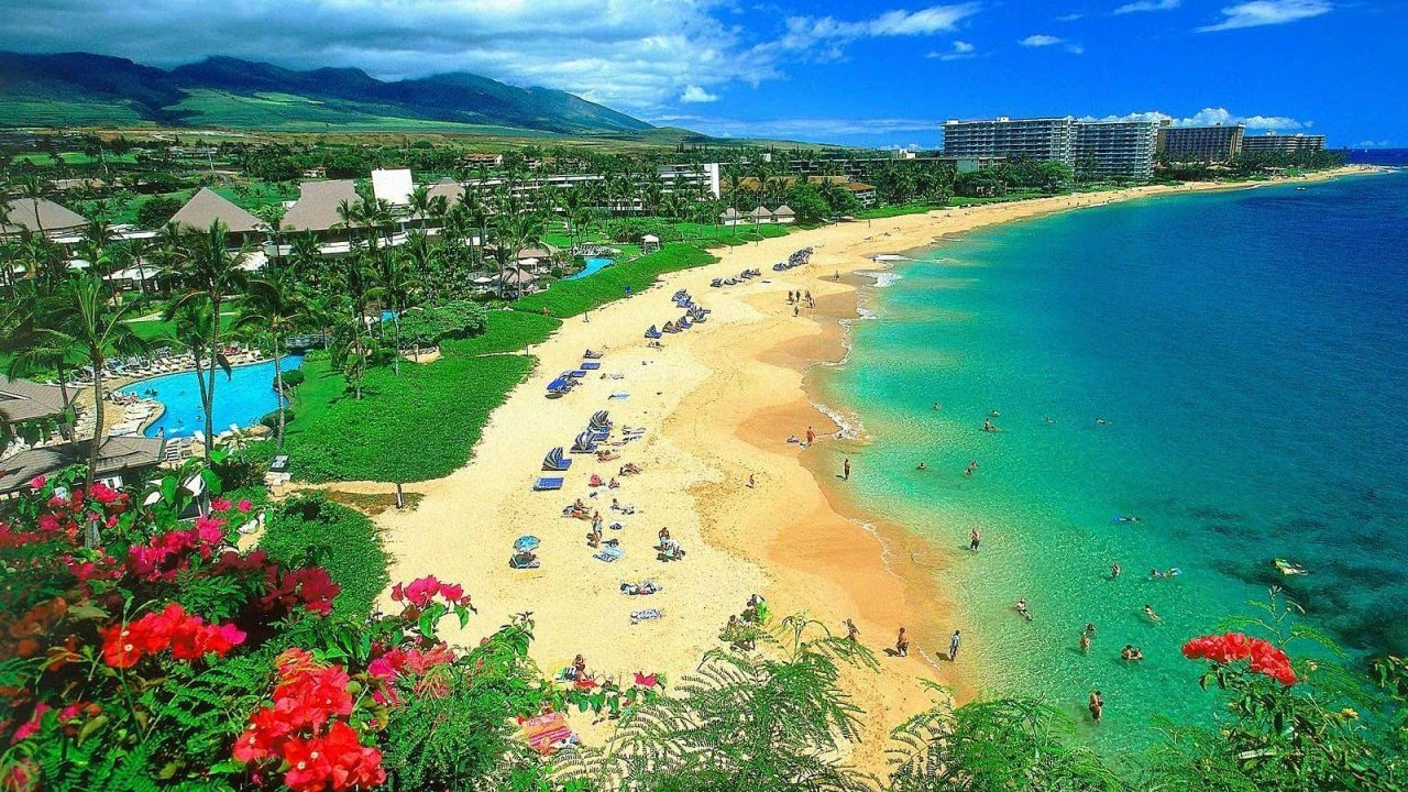 small businesses in Maui