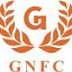GNFC wins the Golden Globe Tigers Award for Excellence in Cashless Payment Leadership