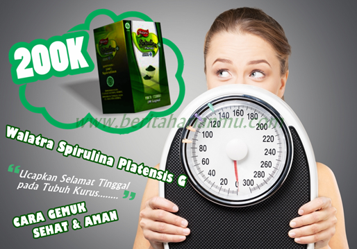 Tag: obat penambah berat badan tanpa efek samping