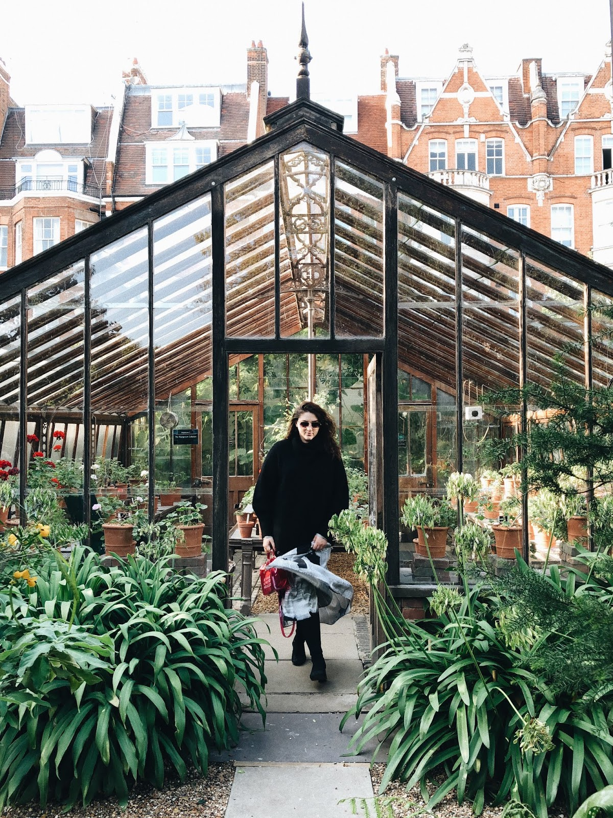 Chelsea Physic Garden botāniskais dārzs Londonā
