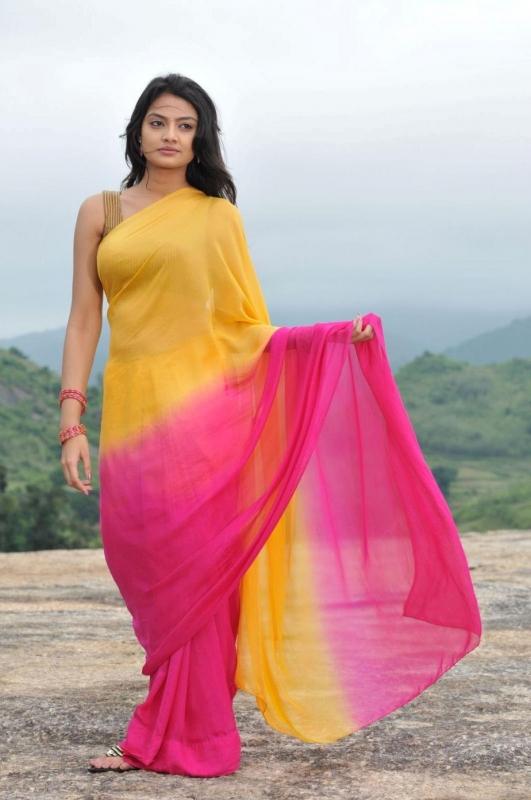 Tollywood Actress Nikitha Narayan Hip Navel Show Stills In Yellow Saree
