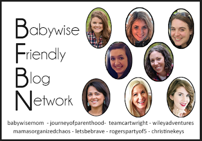 Babywise Friendly Blog Network - Babywise bloggers