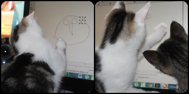 création d'un blog,chatons, ordinateur, photoshop