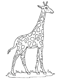 Best Image Of Giraffe Coloring Sheet For Print