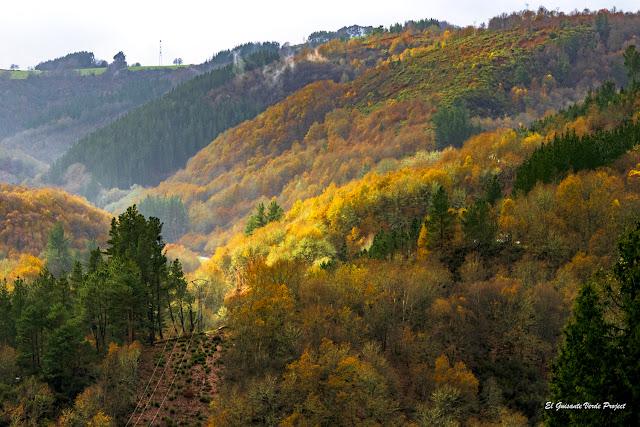Los Oscos - Asturias