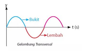 Gelombang Tranversal