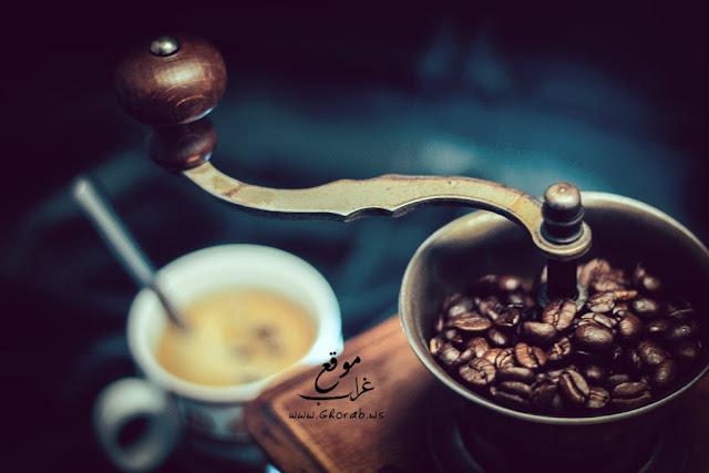 coffee's grinder